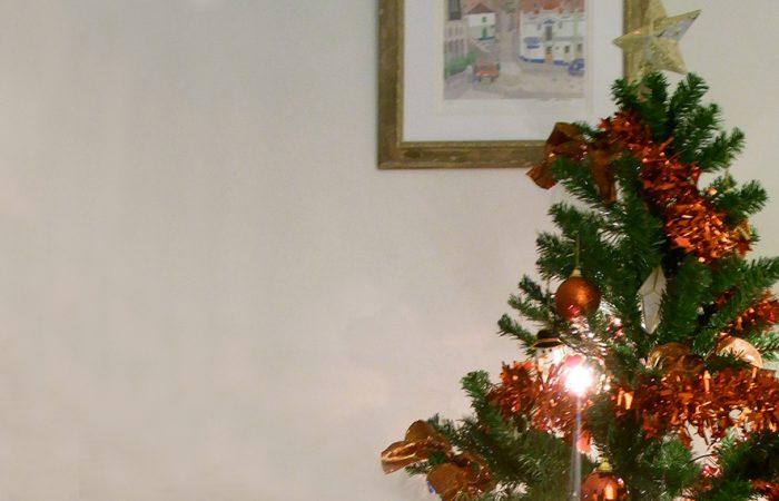 クリスマスのシーズン♪